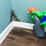 HumiSolutions : l'expert au service d'une habitation saine